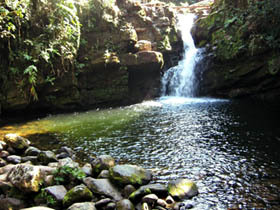 Cascada El León