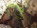 Tunki Cueva