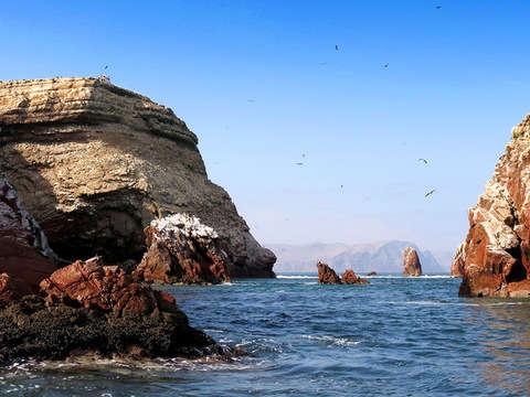 Tour por las Paradisíacas Islas Ballestas