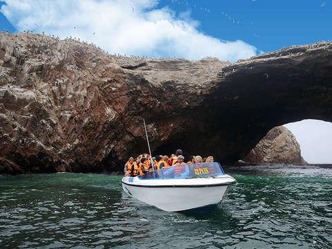 Tour: Islas Ballestas, City Tour y Tubulares desde Ica