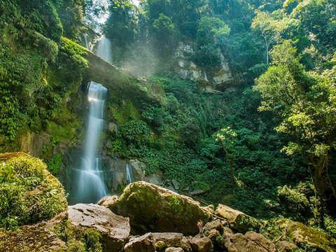 Juanjui [4d/3n]: Parque Nacional Rio Abiseo + Catarata Breo