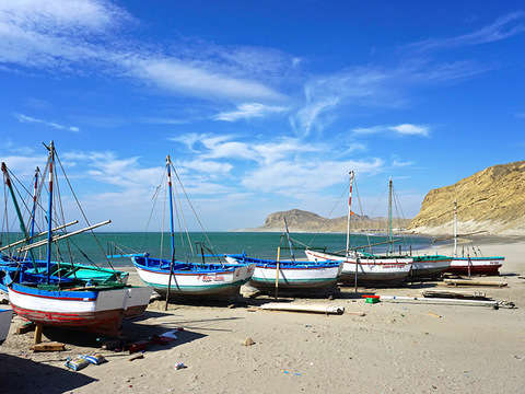 Full Day: Playa el Ñuro y los Órganos (Desde Piura)