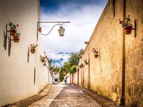 City Tour y Campiña Arequipeña. Incluye Entradas