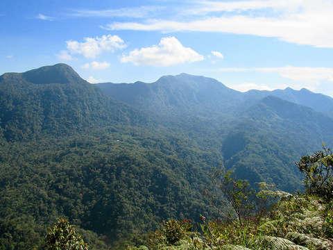 Trekking Reserva Cordillera Escalera y Bosques Alto Shilcayo