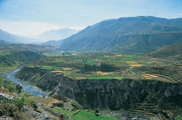 Medium_6_colca