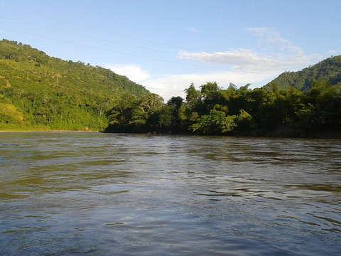 Selva Central Inolvidable